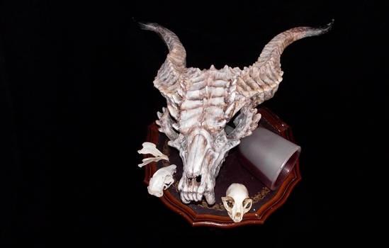 Dragon Skull And Akullls