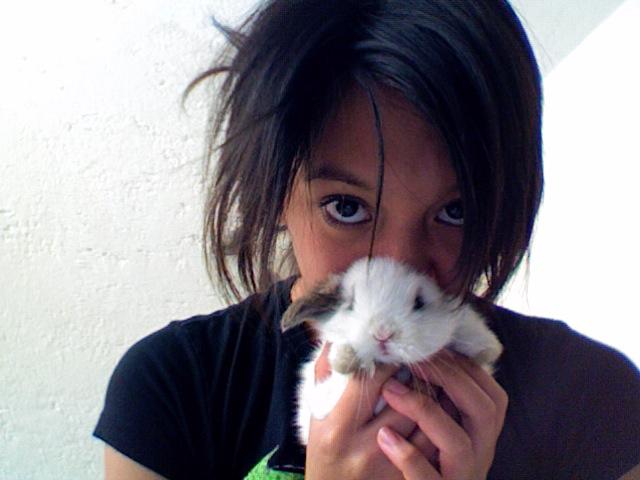 midow-fura's Profile Picture