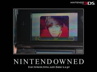 NINTENDOWNED