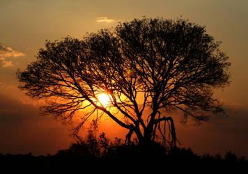 Zambian sunset 2