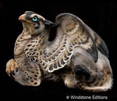 Silver Hawk female griffin