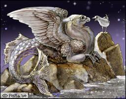 Griffacampus and Seagull card
