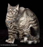 Silver Bengal Flapcat proto