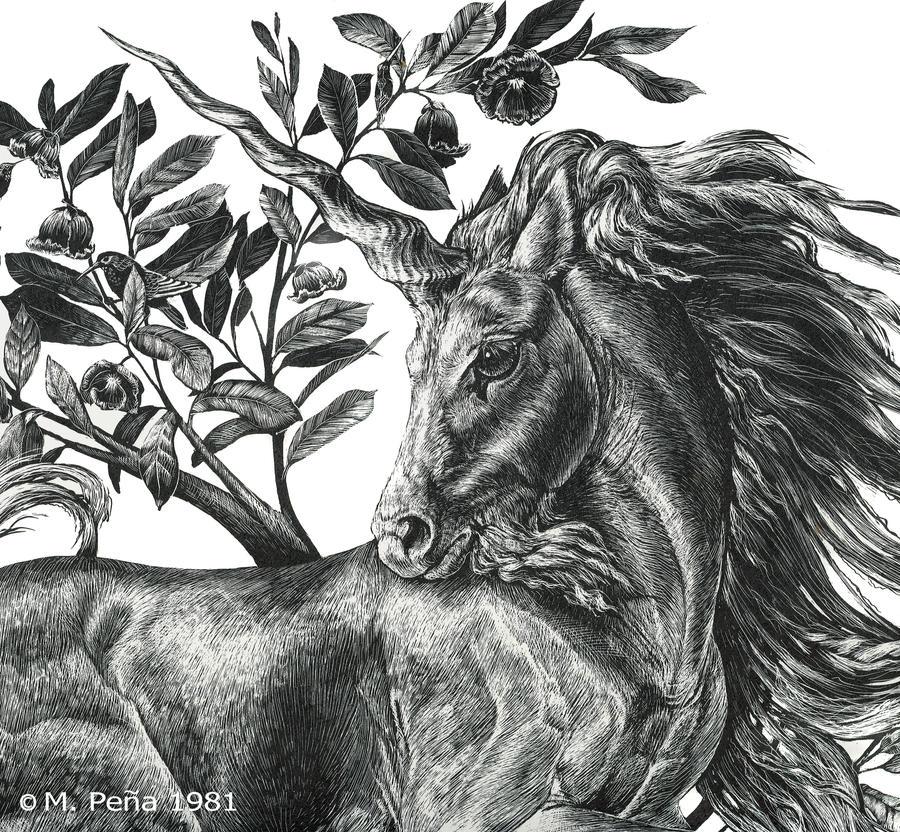 Unicorn print , detail by Reptangle