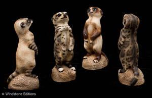 Meerkats in cat colors