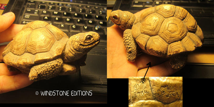 Old Tortoise by Reptangle
