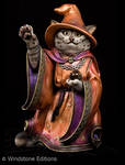 tabby Wizard cat