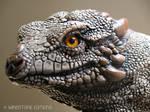 Rock dragon face