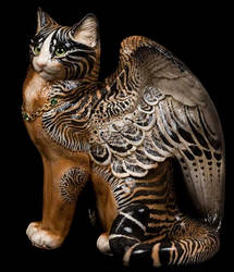 Cuttlefish winged cat by Reptangle