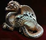 Indoor Garden Dragon Spotty