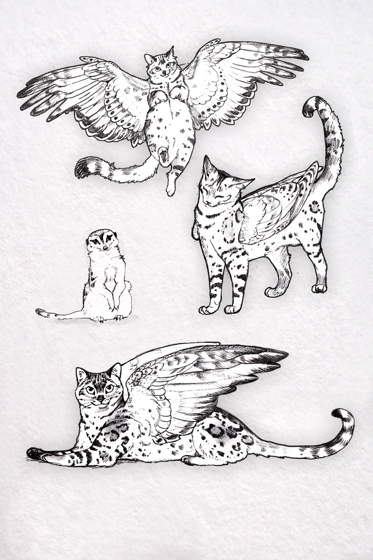 Bengal Cats Winged Coa Sketch Book page by Reptangle