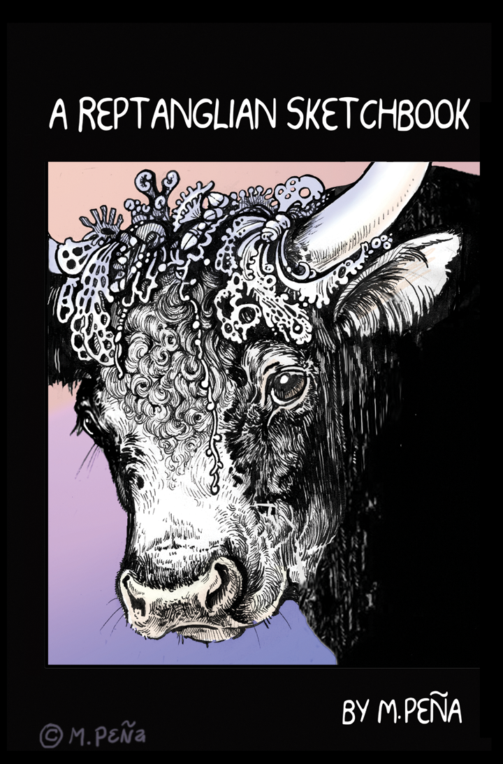 Sketchbook Cover  for 'The Veligent ' kickstarter by Reptangle