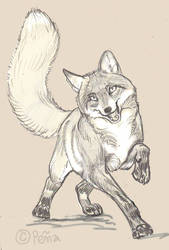 Zooly daily animal sketch