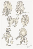 Baboons by Reptangle