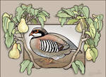 Partridge Pears