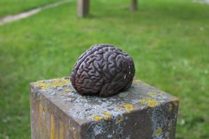 Brain III by LotusOnlineDe