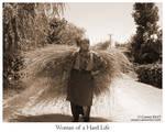 Woman of a Hard Life