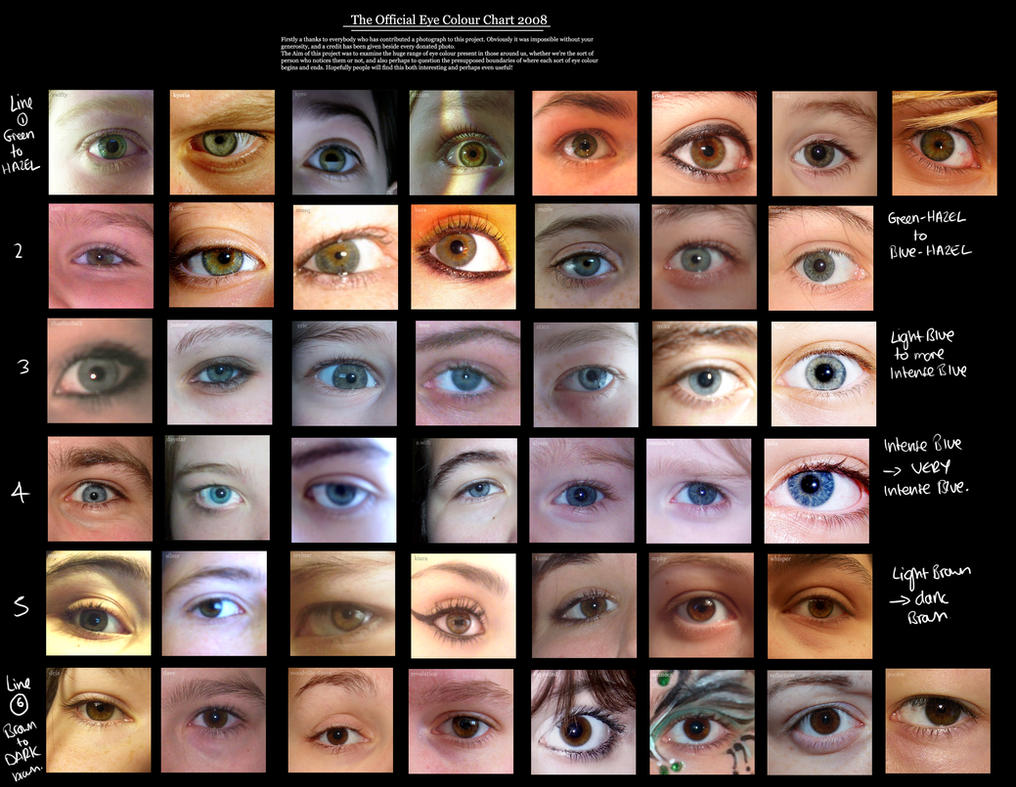 Shades of blue eyes chart image collections free any chart examples shades of blue eyes chart images free any chart examples shades of blue eyes chart image nvjuhfo Image collections