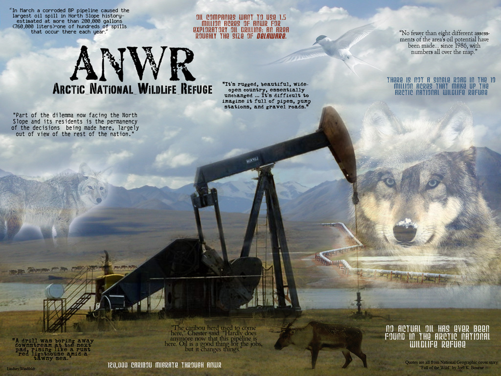 Impacts of oil drilling in the Arctic National Wildlife Refuge