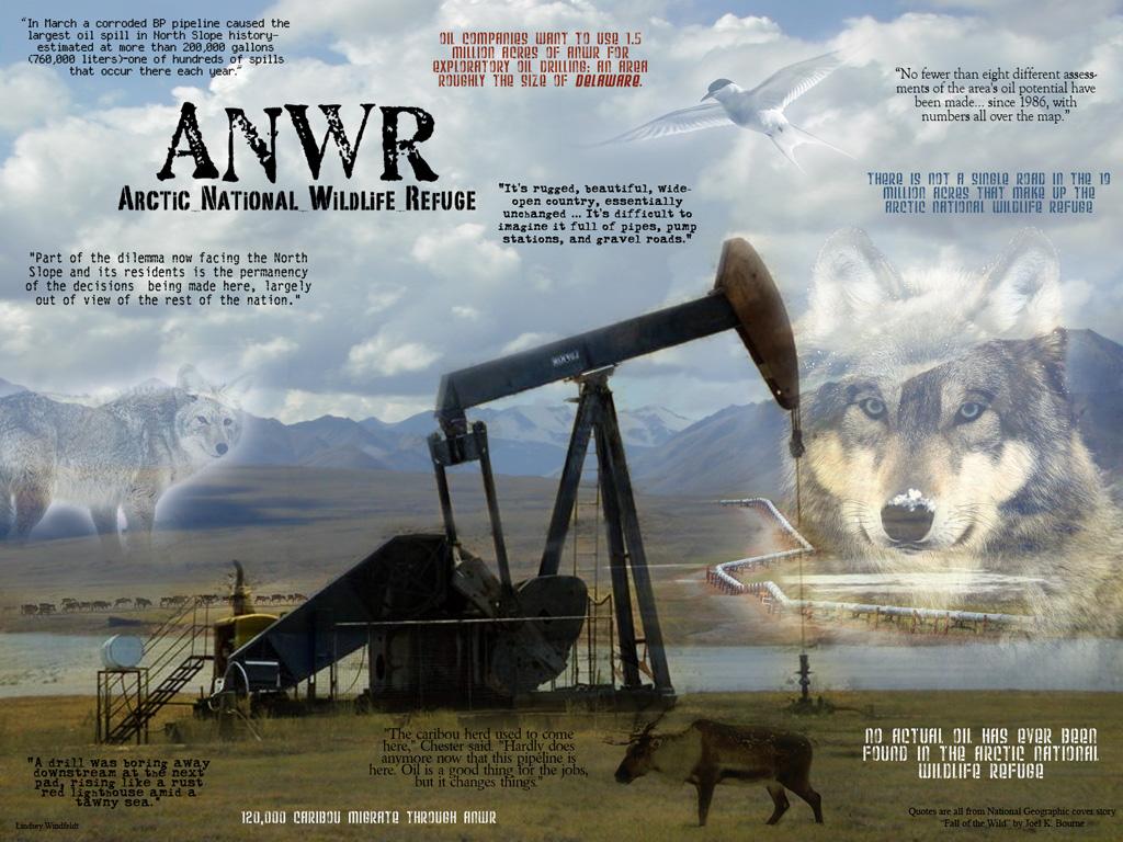 Essay drilling in alaska