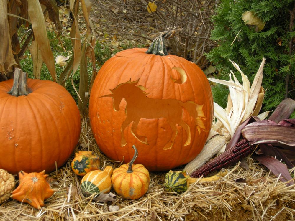 Unicorn Pumpkin by akuinnen24
