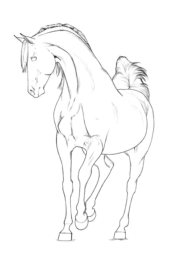Line Art Year 2 : Arabian stallion lineart by akuinnen on deviantart