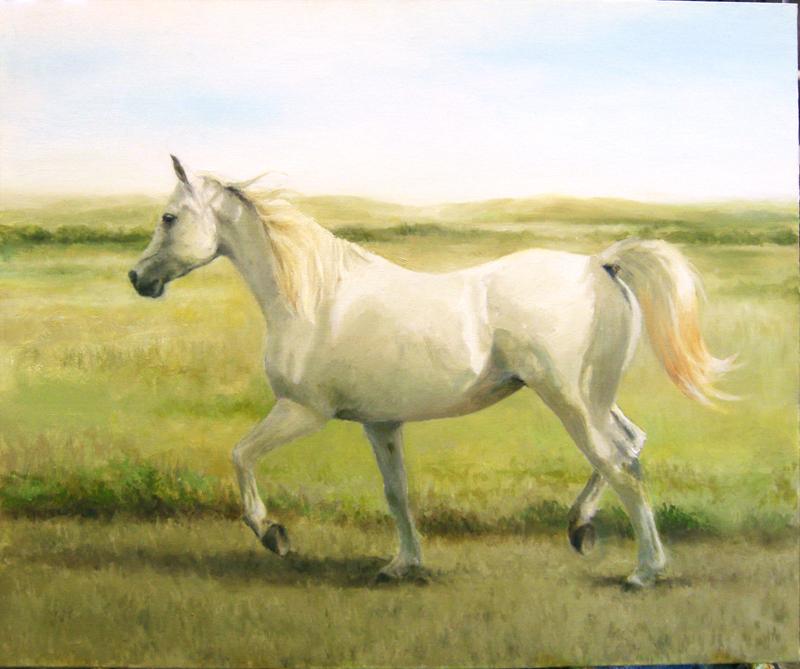 Arabian Mare - oil paint by akuinnen24