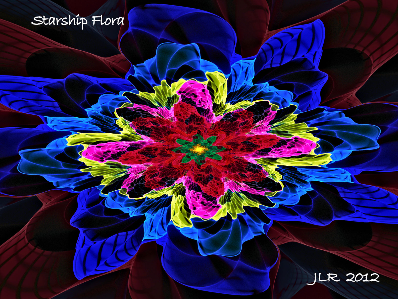 STARSHIP FLORA