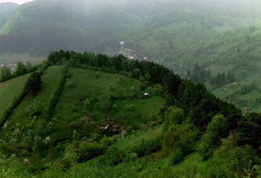 Carpatian Mountains 3 by Gert-IJ