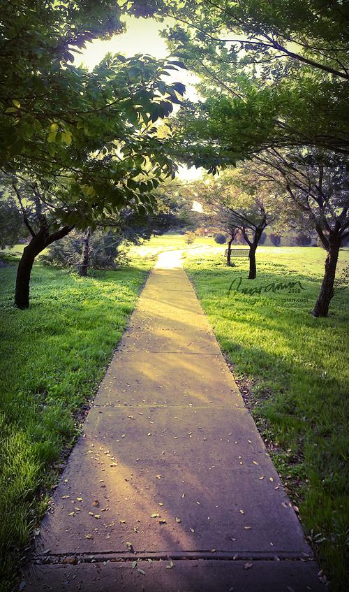 A Nostalgic Path by MediaDesign