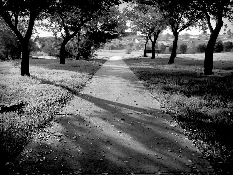 Nostalgic Path BW by MediaDesign