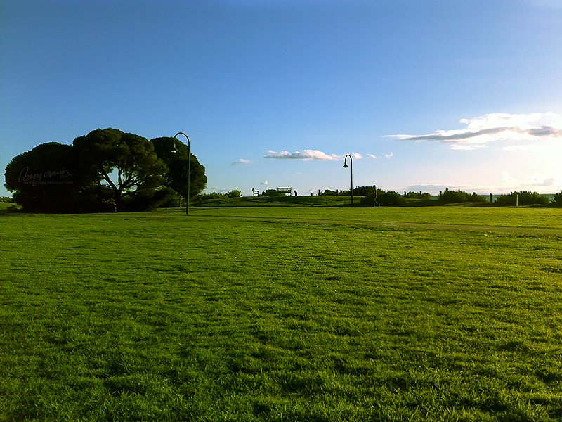 Brighton Park by MediaDesign