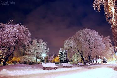 iarna la brasov