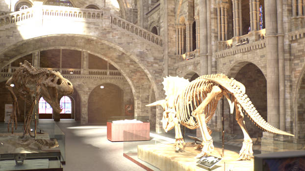 Natural History Museum: Day