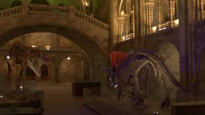 Natural History Museum: Night