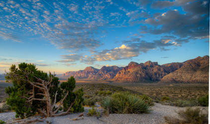 Red Rock Sunrise by Audisportracer