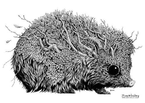 Leaf Hedgehog