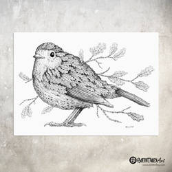 Leaf Robin - Animal and Bird Ink Collection