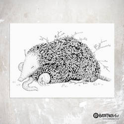 Leaf Mole - Animal and Bird Ink Collection