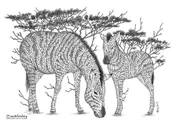 Tree Zebras