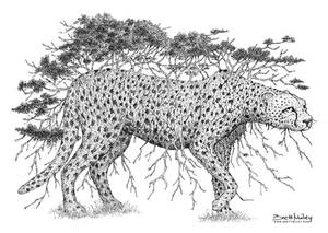 Tree Cheetah