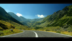 A Road Cut Trough Ages