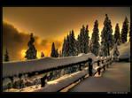 Winter - HDR