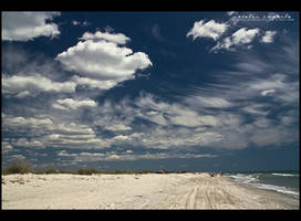 wild beach by vxside