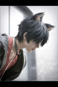 Yoki-Niwa-Honda's Profile Picture