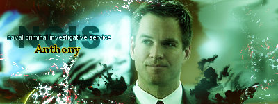 Anthony Dinozzo by Dynamunique