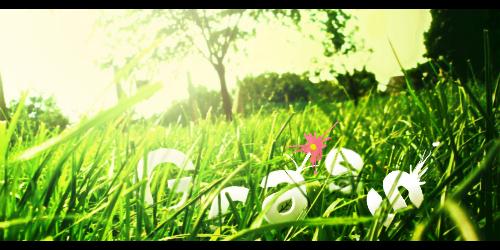 Grass 2.0 by Dynamunique