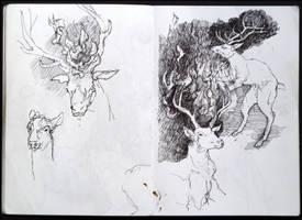 Deer on Fire by HellYesArt