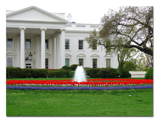 The White House by PawprintsOfMyHeart