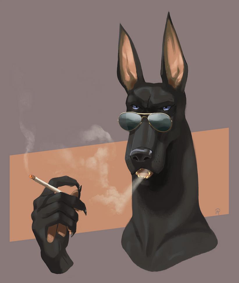 Big Dog by Pelboy
